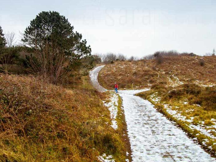 Il sentiero di legno che conduce alla spiaggia della Riserva Naturale di Murlough | © Sara Sangalli