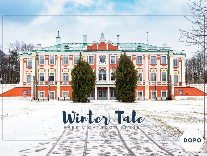 Winter tale preset lightroom