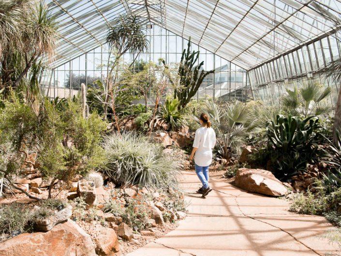 Arids lands House.Royal botanical garden Edinburgh Arids lands Glass House