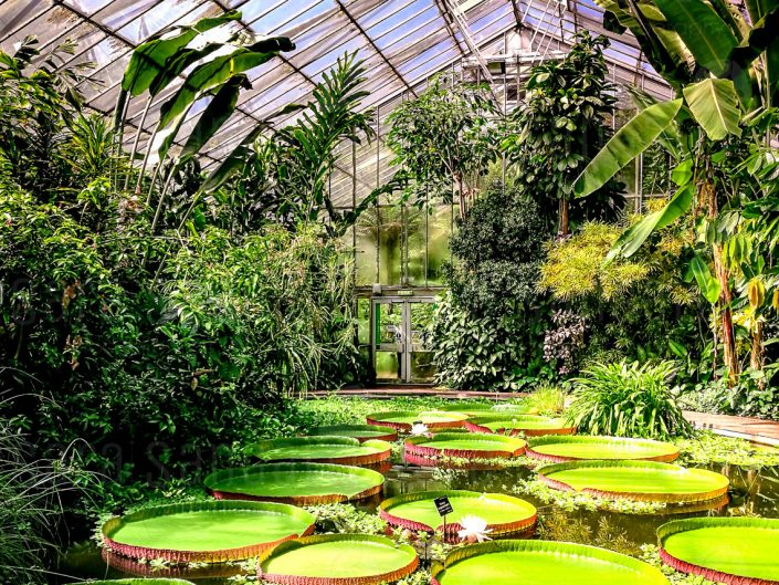 Plants and People House. Giardino Botanico Reale di Edimburgo